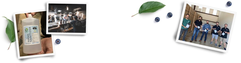 natural vegetation and photographs of support efforts