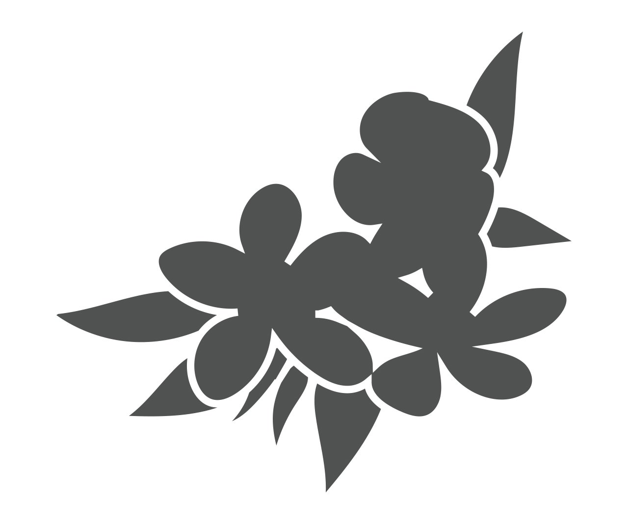 Ingredient for Organic Loquat Leaf