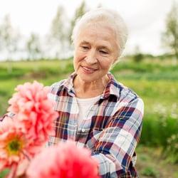 A senior woman handling pink flowers in a field.
