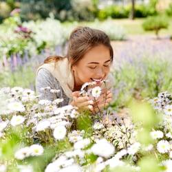 Someone smelling fresh flowers