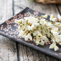 A dish of fresh flower petals